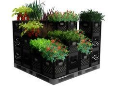 bing images of recycled milk crates | Here's a new configuration for the container garden. This would work ...