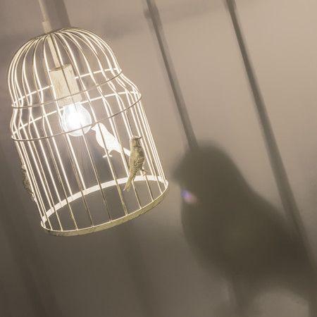 Lámpara colgante BIRDCAGE blanco - Lámpara de techo en forma de jaula. Este modelo es súper atractivo y único, le dará un toque muy original a su hogar. En las varillas de la jaula se pueden ver las siluetas de los pájaros eso hace que se creen unas sombras preciosas.