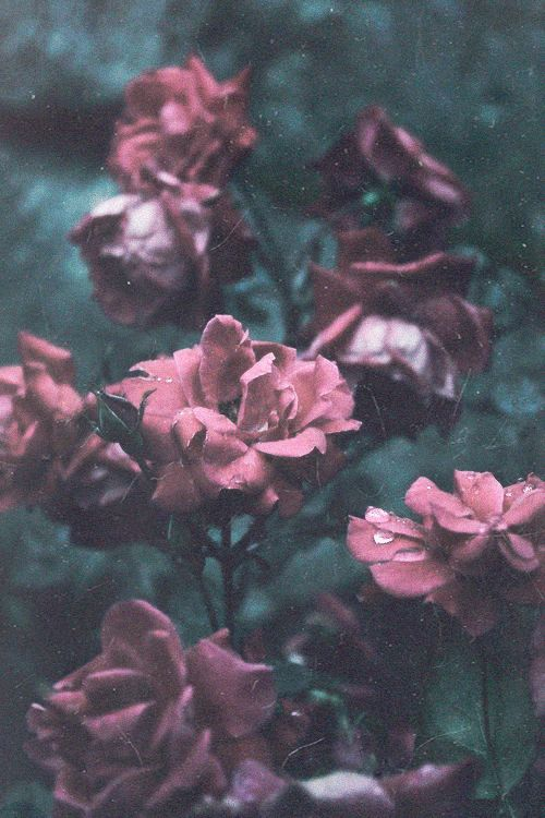 soft grunge photography | photography mine lake hippie boho indie Grunge green water nature ...