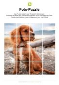 Fotopuzzle Hund (Welpe)