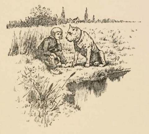 Nello, een arme weesjongen, en zijn trouwe hond Patrasche wonen in Hoboken dit vehaal speelt zich af in 1872 Een enorm mooi maar tragisch verhaal. Je kan dit beeld bewonderen in de Kapelstraat van Hoboken http://nl.wikipedia.org/wiki/Een_hond_van_Vlaanderen