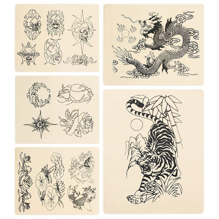 5 Tattoo Practice Skins - Variety Pack