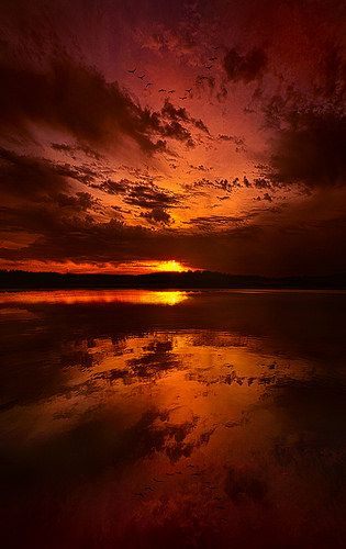Waking at Eve | by Phil~Koch