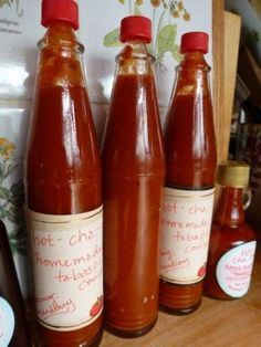HOMEMADE TABASCO SAUCE I've been making salsa for decades, however, I never have really made a concentrated sauce like Tabasco. When I brought in a huge bush of Tabasco peppers, I decided to try and make my own--with great results! Here's how you can do it and it is easy; there is nothing like homegrown & homemade!