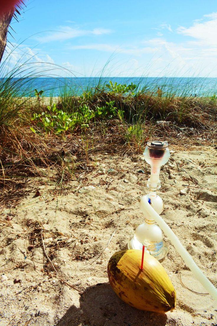 10 Things you must see & do in Key West, Florida http://www.whisperwanderlust.com/10-things-must-see-key-west-florida/