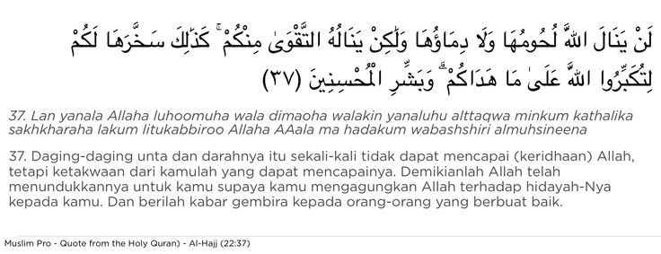 Quote from the Holy Quran, Al-Hajj (22:37) #muslimpro http://www.muslimpro.com