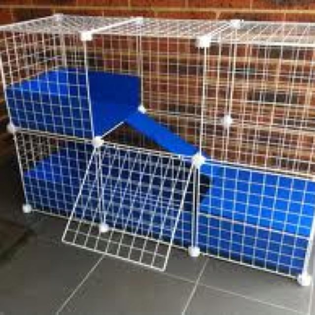 c & c cage from cube storage grids (BEST cages for bunnies and Cavies!!) this is the only kind of cage I use for my buns!  store baught cages are way too small!
