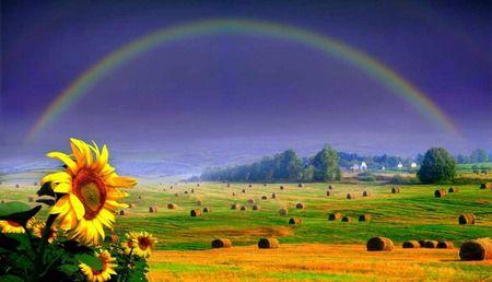 虹の彼方にホイール レインボー 自然 高解像度で壁紙