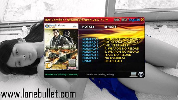 Hello Ace Combat - Assault Horizon - Enhanced Edition lover! Download the Ace Combat Assault Horizon - Enhanced Edition Trainer for free at LoneBullet - http://www.lonebullet.com/trainers/download-ace-combat-assault-horizon-enhanced-edition-trainer-free-17.htm without breaking a sweat!