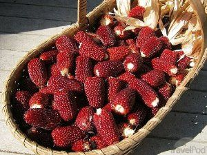 """100 Strawberry Popcorn Seeds for Planting in the Small Garden by Seeds and Things. $1.49. Sweet Flavor. Great for the Small Garden. Easy to Grow. Kids love this popcorn. Strawberry popcorn seeds are fun and easy to grow in your garden. The small 2-3"""" cobs resemble strawberries in shape and color. Strawberry popcorn plants grow only 4 feet tall and produce mahogany colored cobs with blonde husks. This unique looking cob makes  great autumn decorations and tastes great popped. Ki..."""