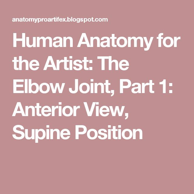Human Anatomy for the Artist: The Elbow Joint, Part 1: Anterior View, Supine Position
