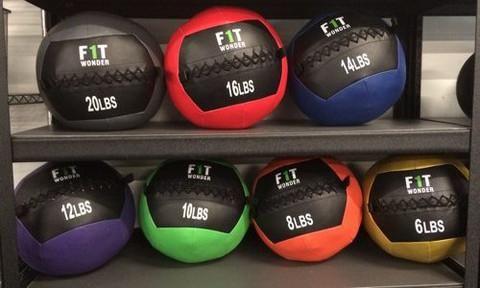 FitnessSanctum.com  CrossFit Medicine Balls from Fringesport / Assorted 6 lbs.- 20 lbs. -- $59-$85---- (fitnessssanctum.com...)