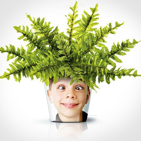 Personnaliser un pot de fleur avec une photo - These are awesome!