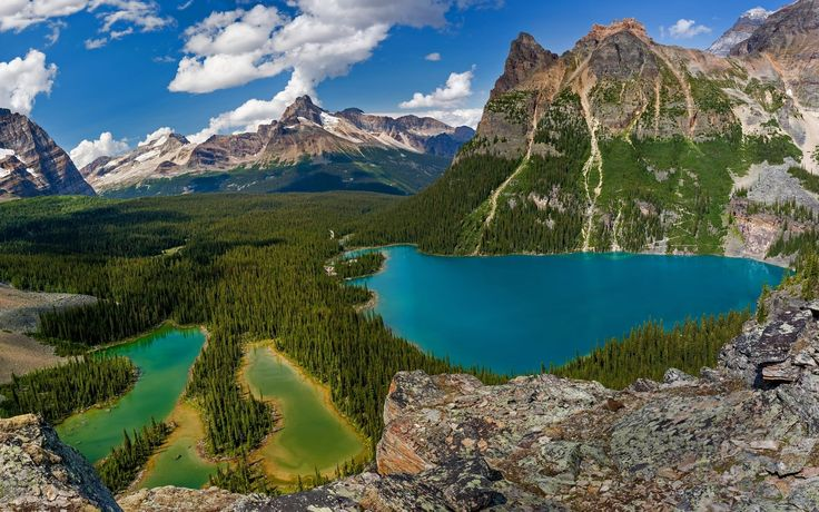 Earth Lake  Landscape Nature Mountain Tree Forest Yoho National Park Canada Wallpaper