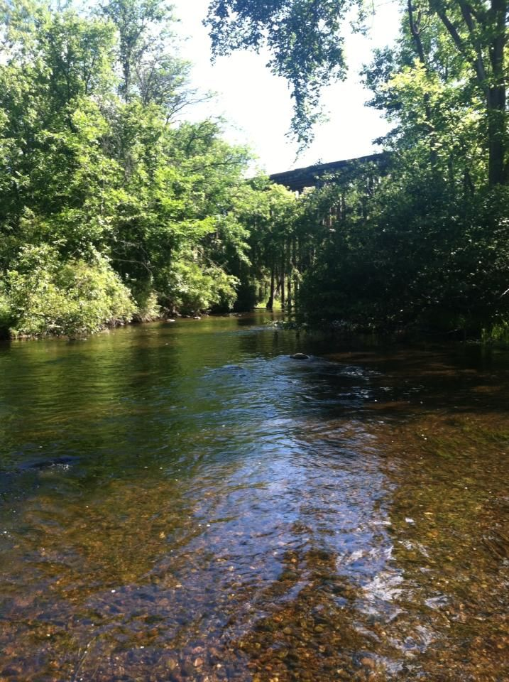 17 best images about fly fishing on pinterest nice for Best fishing in michigan