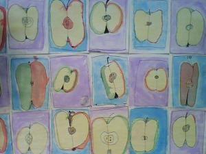 Iagttagelsestegninger. I efteråret købte jeg en pose æbler, skar dem midt over og bad eleverne i 1. klasse om at kigge godt på dem. Eleverne fik udleveret A3-papir og blyanter. De fik at vide, at d…