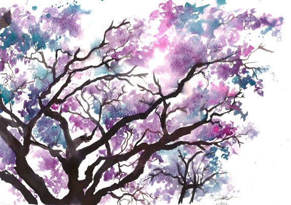 Print from original watercolor study of a jacaranda tree by Jessica Durrant #watercolor #jacaranda