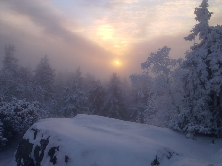 Winter view from the top of Ukko-Koli in Finland, photo by Milla Nyholm