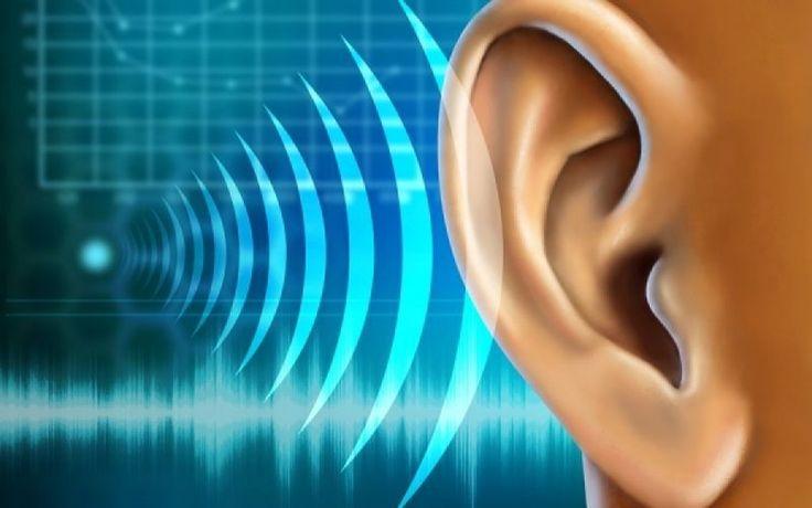 loading... Όπως μας εξηγούν οι γιατροί, τα προβλήματα ακοής προκύπτουν κυρίως σε προχωρημένη ηλικία. Ωστόσο, σήμερα όλο και πιο πολλοί άνθρωποι αντιμετωπίζουν συναφή θέματα, ανεξάρτητα από την ηλικία, το φύλο ή τη φυλή. Η απώλεια της ακοής ουσιαστικά παρεμποδίζει την ικανότητα κάποιου να λειτουργήσει κανονικά και να ολοκληρώσει τις καθημερινές του εργασίες. Η ζωή του …