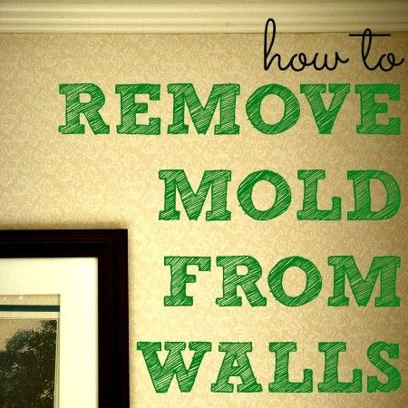 Mold in the home can lead to respiratory and skin infections, and worse. Here's how to remove mold from walls and floors then keep it away for good.