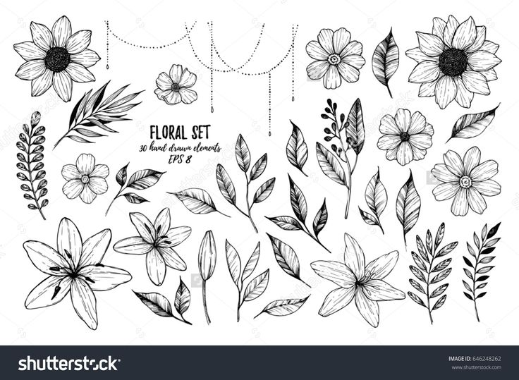 Vector illustrations - Floral set (flowers, leaves and branches). 30 hand drawn design elements in sketch style.  Perfect for invitations, greeting cards, tattoo, prints etc