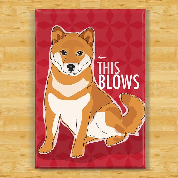 Shiba Inu Dog Magnet  This Blows by PopDoggie on Etsy, $5.99