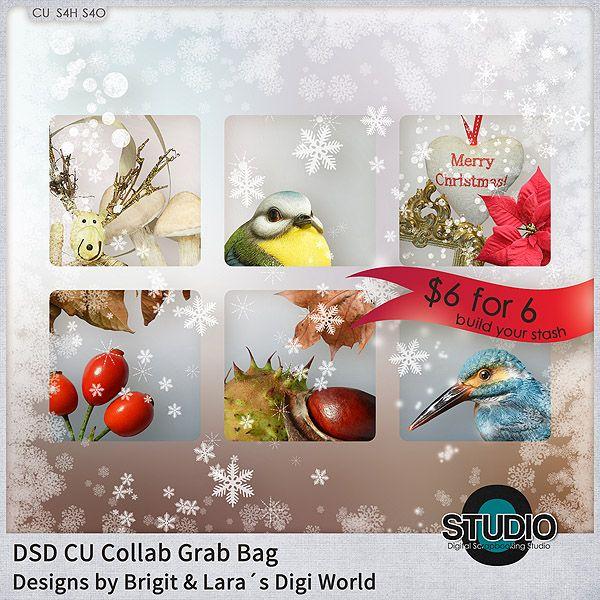 DSD CU Collab Grab Bag by Designs by Brigit and Laras Digi World