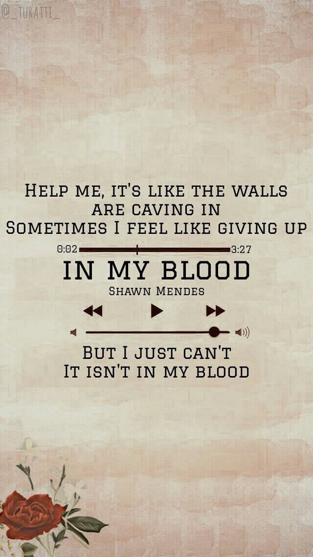 Pin By Alyiha On Lyrics Quote Shawn Mendes Songs Shawn Mendes