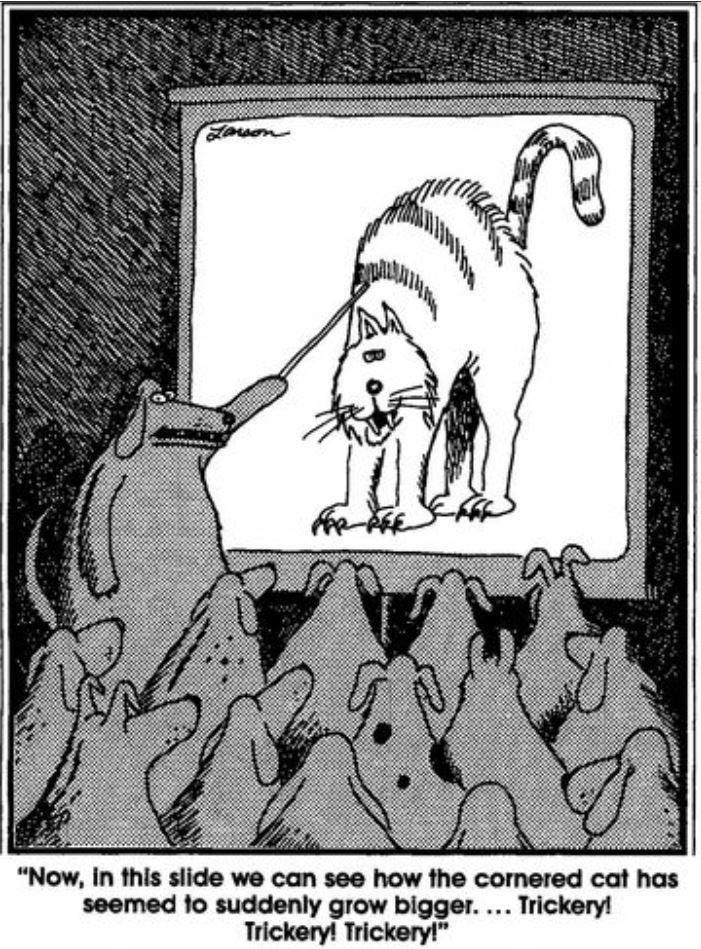 Your daily Far side comics.