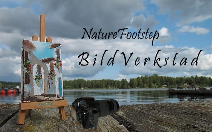 nature footsteps in swedish