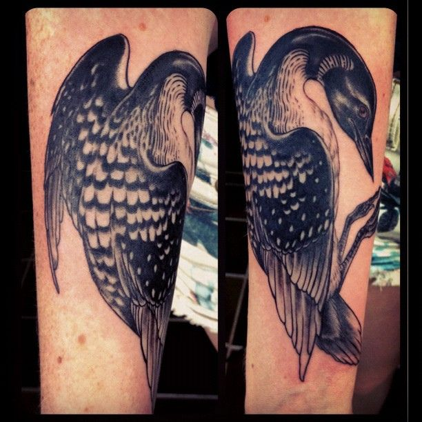 17 best images about loon tattoo on pinterest ontario for Tattoo studio chicago