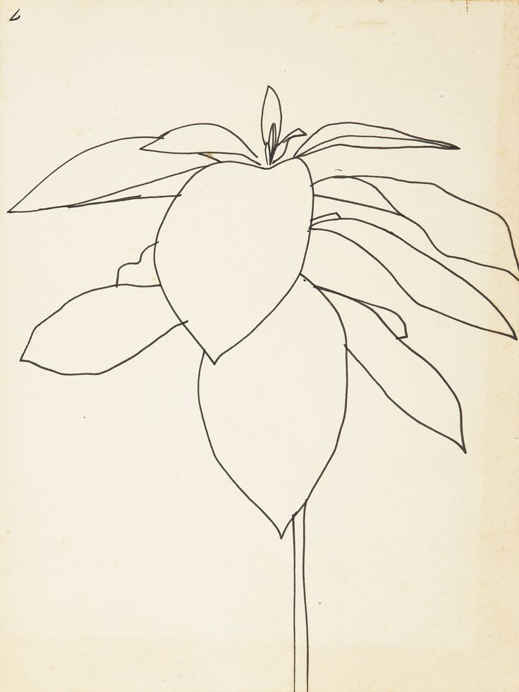 Simple Line Drawing Of Flower : Best simple flower drawing ideas on pinterest