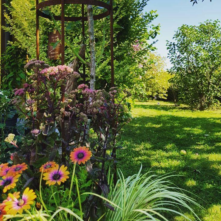 Gardenstyle Gardenideas Gardenmakeov Spatsommerstimmung Im Garten Spatsommerstimmung Im Garten Der Ausblick Beim Apfelaufsammeln Sedu Garten Resim