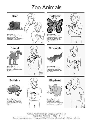 ASL SignBank   Sign Linguistics & Language Acquisition Lab
