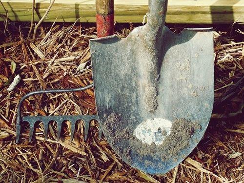 Gartengeräte fertig, los! Gartenarbeiten im Februar