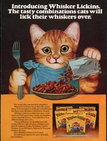 10 Images About Vintage Pet Pet Supply Animal Ads On