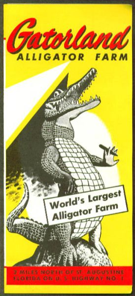 Alligator Farm Between Palm Beach And Jacksonville