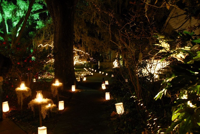 17 Best Images About Twinkle Twinkle On Pinterest Fireflies Starry Nights And Walkways