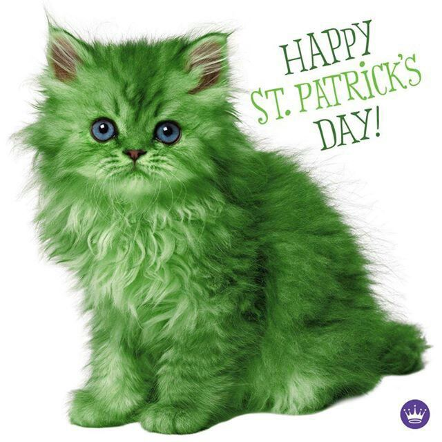 Happy St. Patrick's Day! st patricks day happy st patricks day st patricks day quotes st patricks day pictures st patricks day images quotes for st patricks day