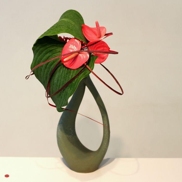 Ikebana ~ flamingo bonnet