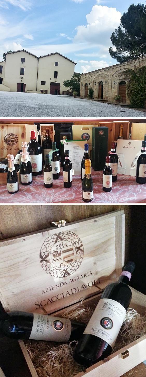 La produzione vinicola di @Scacciadiavoli1 #InMontefalco foto di @AleGiovanile