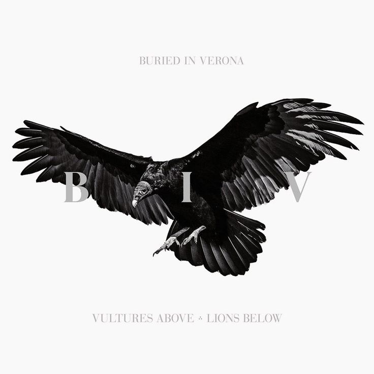 Buried In Verona - Vultures Above, Lions Below (Album 2015)