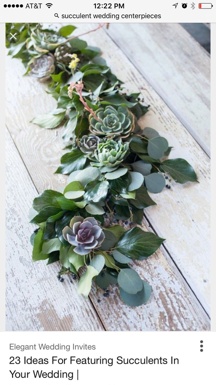 best succulent table decor images on pinterest flower