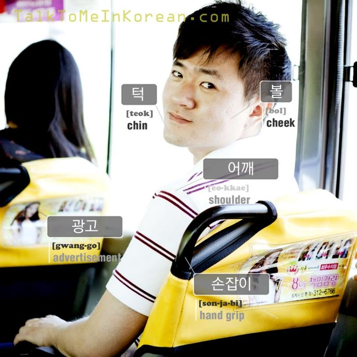 ❋Learn Korean - 5.Vocabularies with pictures (talktomeinkorean.com)