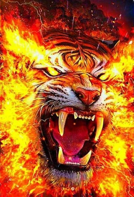 النمر نمر صور نمور طريقة حيوان حيوانات صور نمر النمر الوردي صور نمور صور النمر قناة النمور أسد ضبع الغابة صور ن Tiger Artwork Lion Live Wallpaper Tiger Drawing