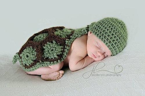 Sleeping turtle