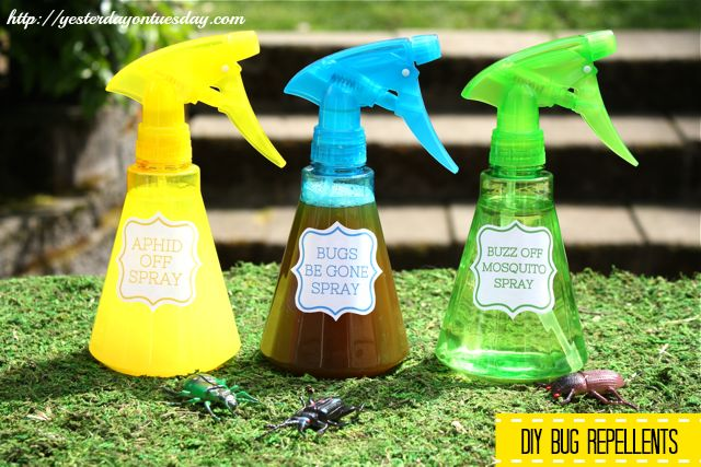 19 Best Images About Natural Insect Repellent On Pinterest