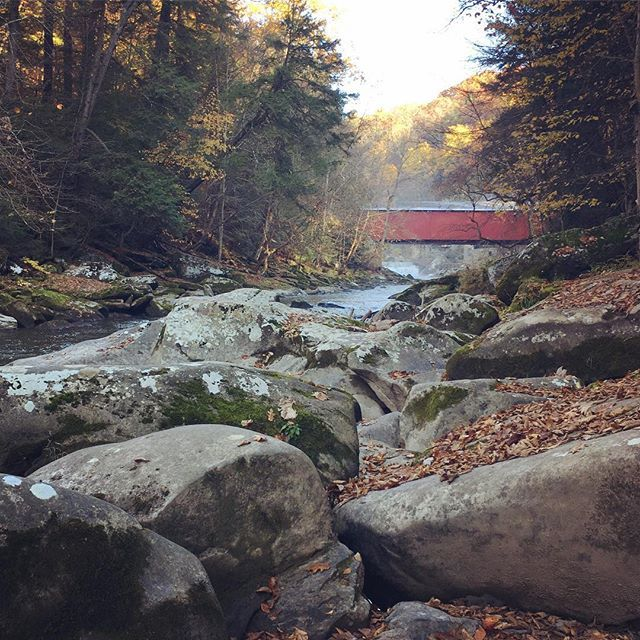 McConnell's Mill State Park is gorgeous.  Went for a hike this weekend with some friends from work. Enjoyed hiking and getting to know everyone better. 🍂🍁 #VisitPA #WesternPA #countrylivingmag  #getoutdoors #fall #statepark #hiking #McConnellsMill #coveredbridge #autumn #mcconnellsmillstatepark #beautyinnature #fall🍁 #fallcolors #fallfoliage  #beautyintheeveryday