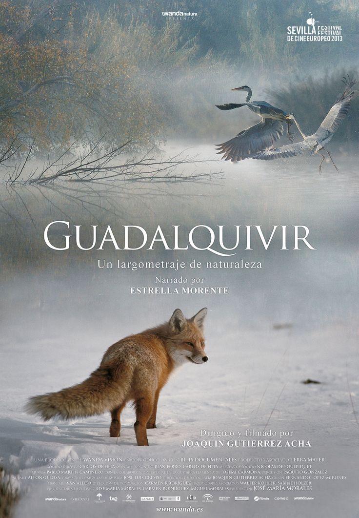 Una película dirigida por Joaquín Gutiérrez Acha. Guadalquivir es un…