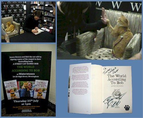 Street Cat Named Bob Books Tesco